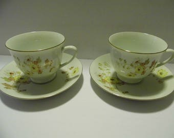 2 Teacups & 2 Saucers 4pc matching set! Northridge Fine Porcelain China - Priority Shipping!!! MORE in shoppe!