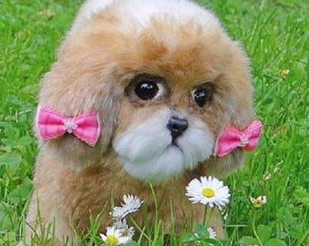 "Little puppy ""Shiny Angel"""
