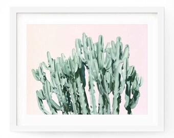 Cactus Poster, Cactus Art Print, Succulent Art, Cactus Wall Art, Botanical Print, Cactus Photo, Desert Print, Cacti Print, South Western Art