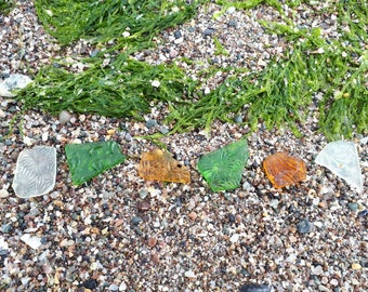 Sea glass collection of vintage privy glass,perfectly worn by the sea,smooth edges.Genuine surf tumbled Scottish beach finds.