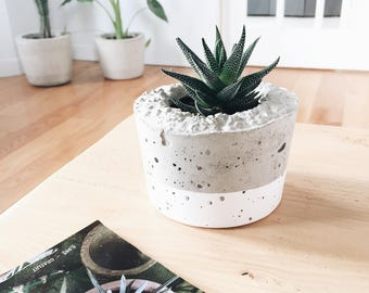 Without plant - small concrete planter