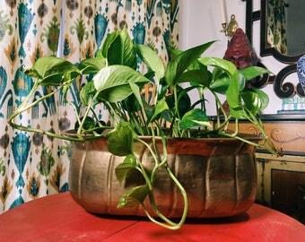 Brass Planter, Large Hammered Brass Pot