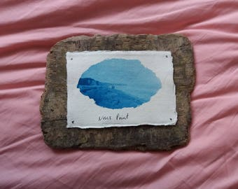 Nose's Point Cyanotype