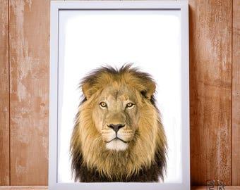 Lion Print, Lion Wall Art, Safari Prints, Kids Wall Art, Animal Wall Art, Lion Photo, Lion Poster, Nursery Decor, Baby Shower Print