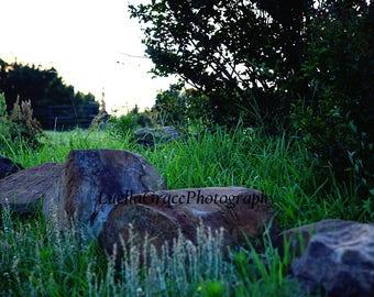 Large Rock background