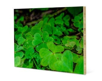 Clover patch wall art, printed on bamboo panel