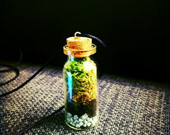 Real moss terrarium necklace in sweet tiny glass bottle