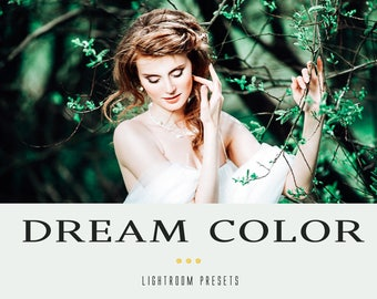 Dream color professional  lightroom presets