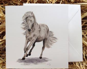Greeting card - Andalusian Horse