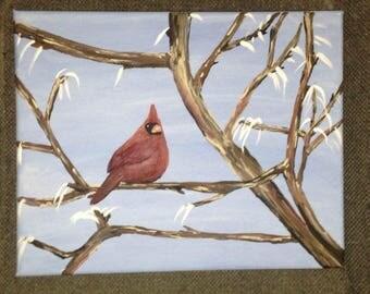 8 x 10 Northern Cardinal