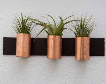 Leather and Copper Air Plant Wall Decor