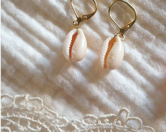 Stud Earrings, cowrie shells and gold-plated