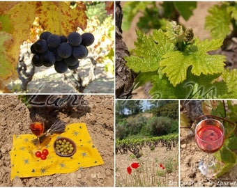 Photo 30X40cm memory of a Provence picnic in the vineyards of Bandol