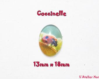 Glass cabochon illustrated 13mm x 18mm Ladybug Motif