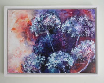 Queen Anne's Lace, A beautiful, floral, Giclee Print on Canvas in a floating white wooden Frame. (Artist Proof))