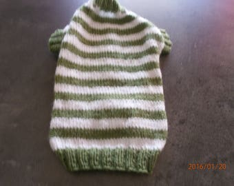 Green and white striped dog coat