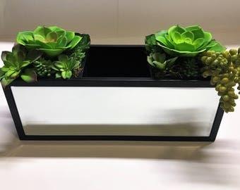 Mirrored Remote Control Succulent Caddy