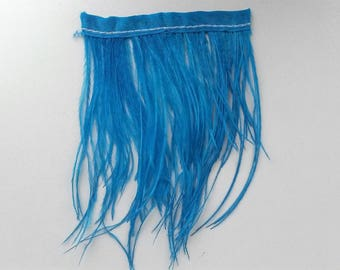 turquoise blue filament with ostrich feather band 8cm