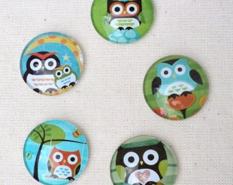 Set of 5 cabochons round glass 20mm 5 different owls pattern