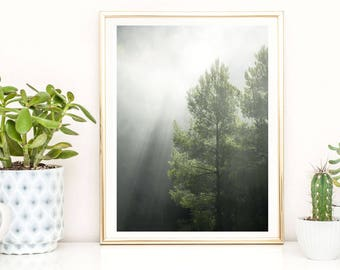 Forest Art Poster, Black and White Forest, Minimalist Landscape Print, Fog Poster, Misty Trees Nature Photography Prints, Scandinavian Art