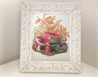 Mushroom Illustration Vintage Book Print. Valentine watercolour for framing. Autumn picture of red & white toadstool, fern and fall leaves