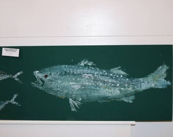 Striped bass on green cloth (gyotaku)