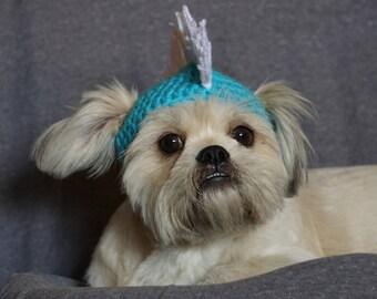crochet hat for pet