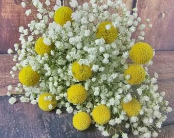 Happy Balls Bouquet, Billy Ball Bouquet, Babies Breath Bouquet, Rustic Bouquet, Yellow Bouquet, Happy Bouquet, Spring Bouquet, Shabby Chic