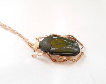 Real beetle 18k gilded, necklace, genuine bow gold plated, necklace