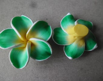 x 1 large Pearl flower polymer nuanced green outline white 3.7 x 3.6 cm