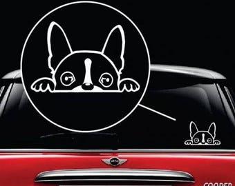 Boston Terrier Peeking Dog Vinyl Window Decal Sticker