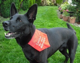 Dog Bandana with Warning