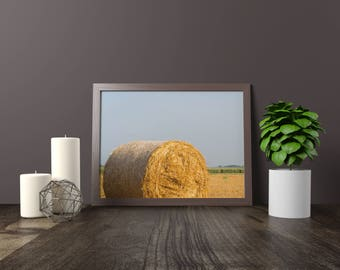hay, bale, bales, field, straw, farm, wheat, harvest, rural, agriculture, download, JPG