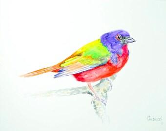 Painted Bunting Watercolor Bird Painting Original Watercolor Home Decor Colorful Bird Art Woodland Nursery Wall Art Bird Lover Gift