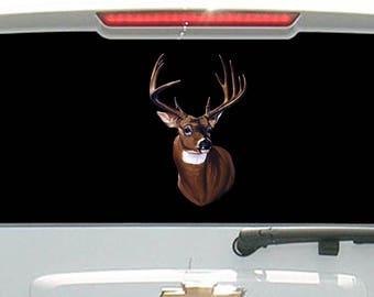 Deer Head Mounted Six Point Deer