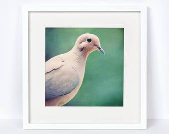Rustic Bird Decor, Bird Lover Gift, Modern Farmhouse Home Decor, Gift for Her, Bird Gifts for Women, Woodland Nursery Decor, Mourning Dove