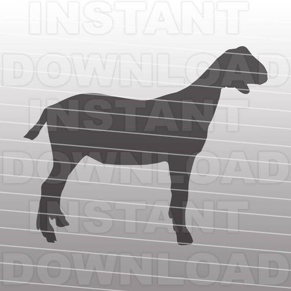 Download Show Goat SVG FileLivestock SVG-Cutting Template Vector Clip