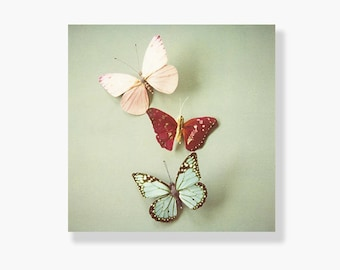 Butterfly photo canvas, whimsical pastel butterfly photo, nursery decor, girls room decor, blue, pink, butterfly art - I'll Follow You