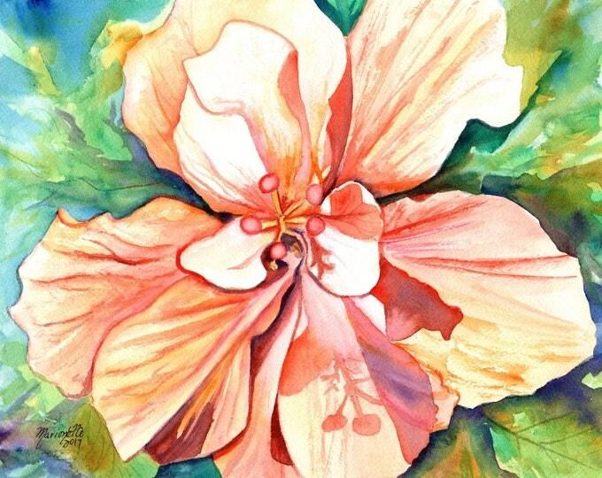 hibiscus art print, 8x10 giclee prints, hawaiian art,  peach hibiscus, hibiscus paintings, kauai maui oahu,  hawaiiana, tropical flowers