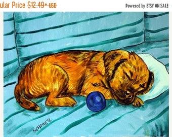 20 % off storewide Border Terrier Taking a Nap Dog Art Print