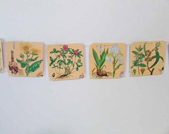 Paper Banner, Paper Bunting, Vintage Botanical, Herbs & Flowers Wall Banner, Floral  Bunting, Sun Room Decor, Vintage Flower Prints Bunting