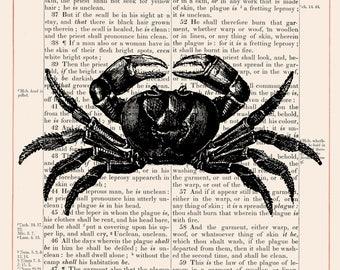 Vintage Crab on 1883 Bible Paper