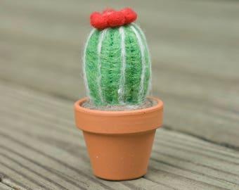 Mini Needle Felted Cactus
