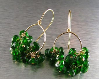 15% Off Chrome Diopside and Gold Filled Cluster Earrings