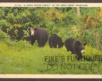 Great Smoky Mountains National Park Vintage Linen Postcard - Black Bears, Happy Native Family (Unused)