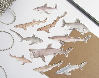 Shark stickers - animal stickers - shark illustration stickers - children's sticker set - hand made shark stickers - shark stationery