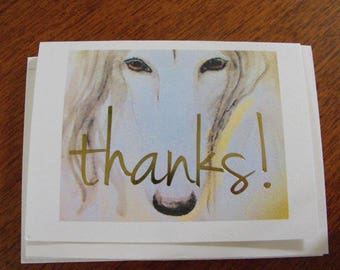 Afghan Hound Note cards