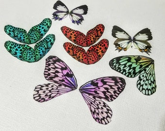 Medium Butterfly and Dragonfly Wings Transparency Cut Outs