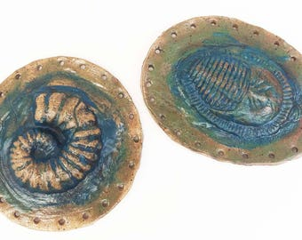 Ammonite, Nautilus, Trilobite  fossil shell Pottery Basketry Bases for Coiling