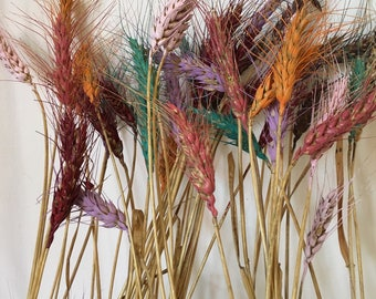 25 Painted Wheat Stems Stalks for Floral Arranging
